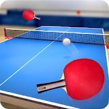 Icon Table Tennis Touch