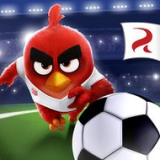 Icon Angry Birds Football