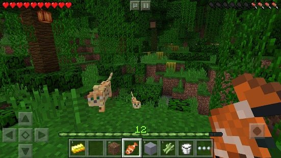 Screenshot Minecraft